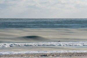 the slush fund surfing life